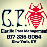 clarillo pest management
