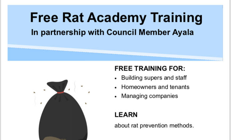Rat-Academy-Jan-2019-b
